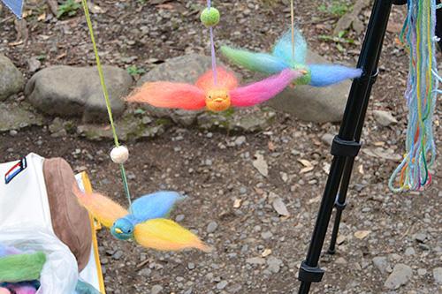 rainbowbird02.jpg