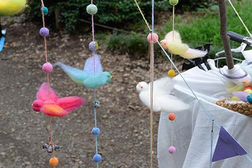 rainbowbird03.jpg
