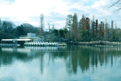 井の頭公園 12月29日午後1