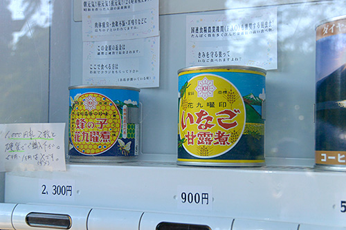 蜂の子 花九曜煮・ いなごの甘露煮(900円)
