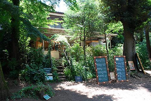 井の頭公園 ブルースカイコーヒー