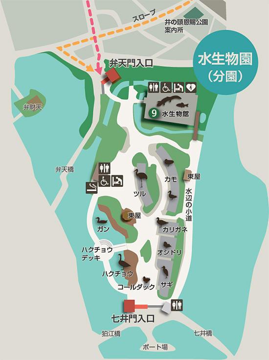 水生物園マップ