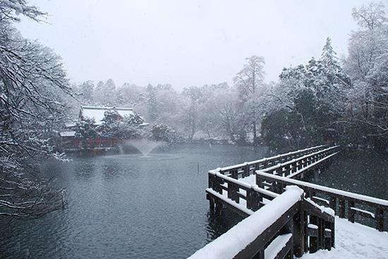 2012年2月29日の井の頭公園の雪景色