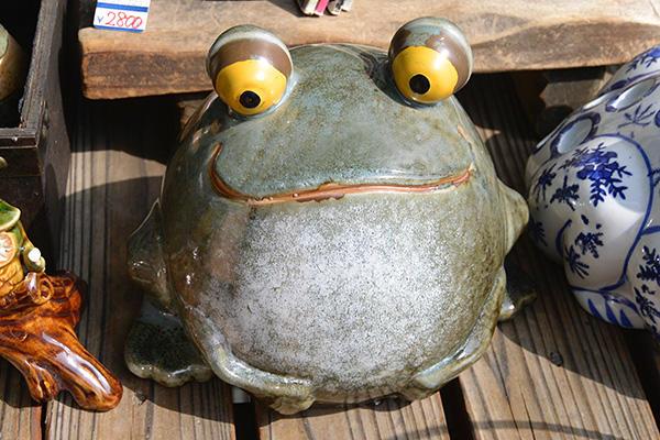 カエルの?