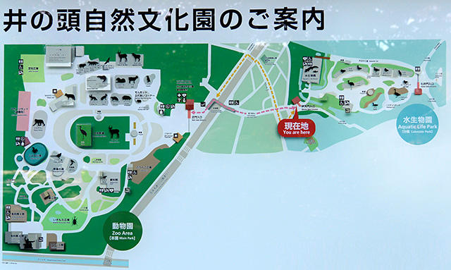 井の頭自然文化園の案内図