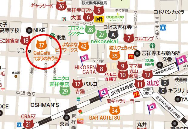 Map_Cat Café てまりのおうち