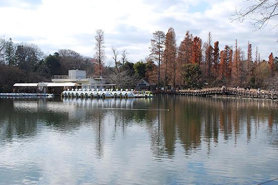 東の方から見た七井橋